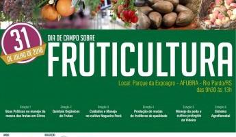 Equipe participa de Dia de Campo sobre Fruticultura em Rio Pardo