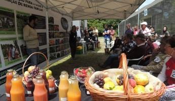 Projeto Quintais participa do XIII Dia de Campo em Agroecologia na Estação Experimental Cascata