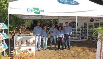 Equipe participa da 19ª Expoagro Afubra