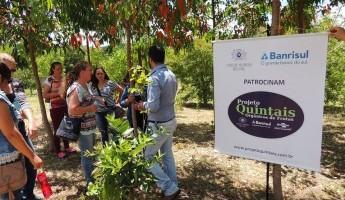 Projeto Quintais participa do XIV Dia de Campo em Agroecologia