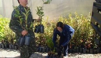 Projeto Quintais contribui para a revitalização de área verde