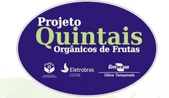 Diretoria da Eletrobras CGTEE aprova a renovação do Projeto Quintais por mais um ano