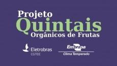 """Agricultores familiares de Arambaré-RS receberão """"quintais orgânicos"""""""