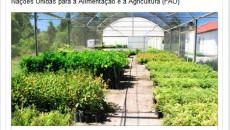 Embrapa tem Projeto selecionado pela FAO.