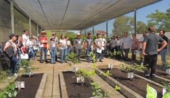 Projeto Quintais participa do VIII Encontro sobre Pequenas Frutas e Frutas Nativas do Mercosul e VIII Simpósio Nacional do Morango