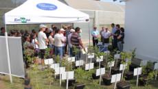 Participação do Projeto Quintais Orgânicos de Frutas no Dia de Campo Alternativas para Diverisificação da Agricultura Familiar