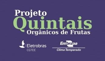 Projeto Quintais da Embrapa ganha prêmio ambiental