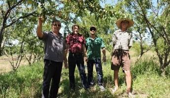 Projeto Quintais recebe visita do Chefe da Embrapa Roraima
