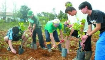 Projeto da Embrapa garante os benefícios da fruticultura