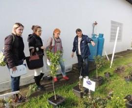 Professoras da UFPel visiam o Projeto Quintais
