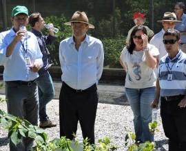 Equipe do Projeto Quintais recebe visita de representante da FAO.