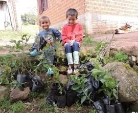 Comunidade Quilombola recebe quintal orgânico em Canguçu-RS