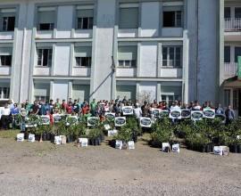 Entrega dos Quintais Orgânicos de Frutas na EFASC