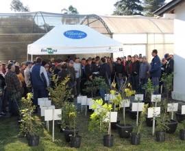 Agricultores assistidos pelo CAPA participam do dia de campo