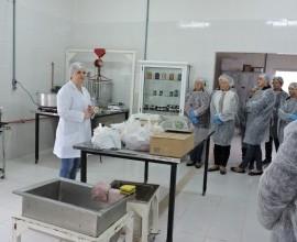 Cursos em Agroindústria- Processamento de Frutas e Hortaliças, ministrado pela Dr. Ana Krolow.